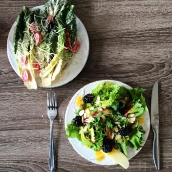 dual salads