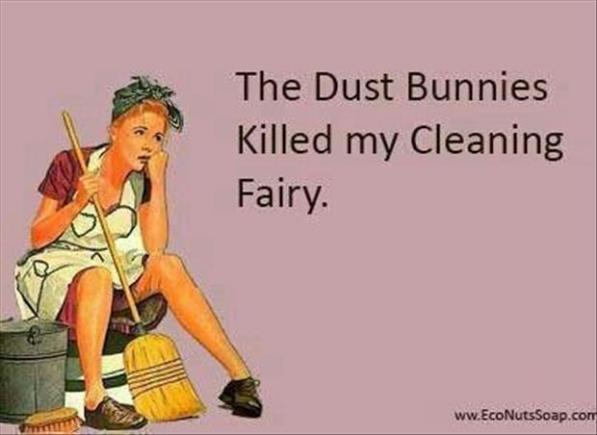 funny-cleaning-quotes