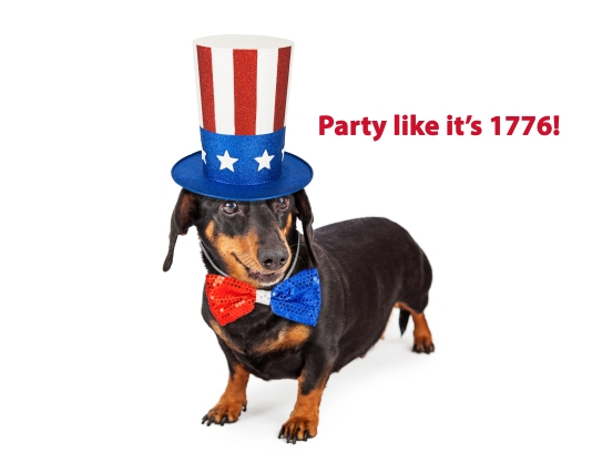Fourth of July Dachshund Dog